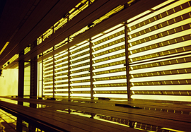 Photo of a window with half open shutters in Athens Airport